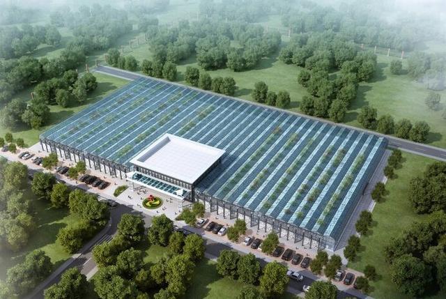生态餐厅温室 — 现代设施农业和绿色餐饮完美结合的产物