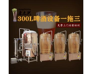 信阳康之兴专业公司值得选择 自制啤酒设备 啤酒的制作设备